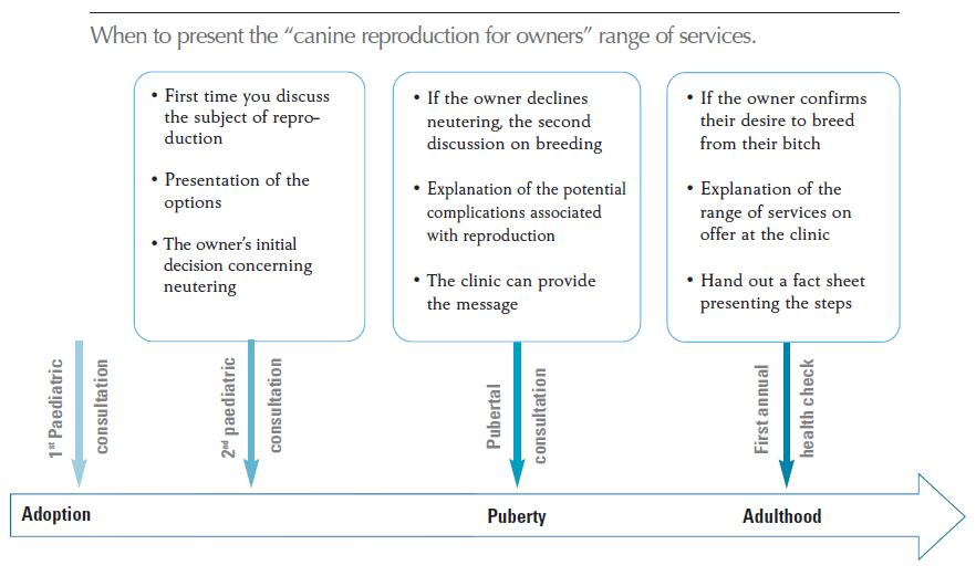 When to present the range of services