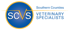 scvetspecialists.co.uk logo