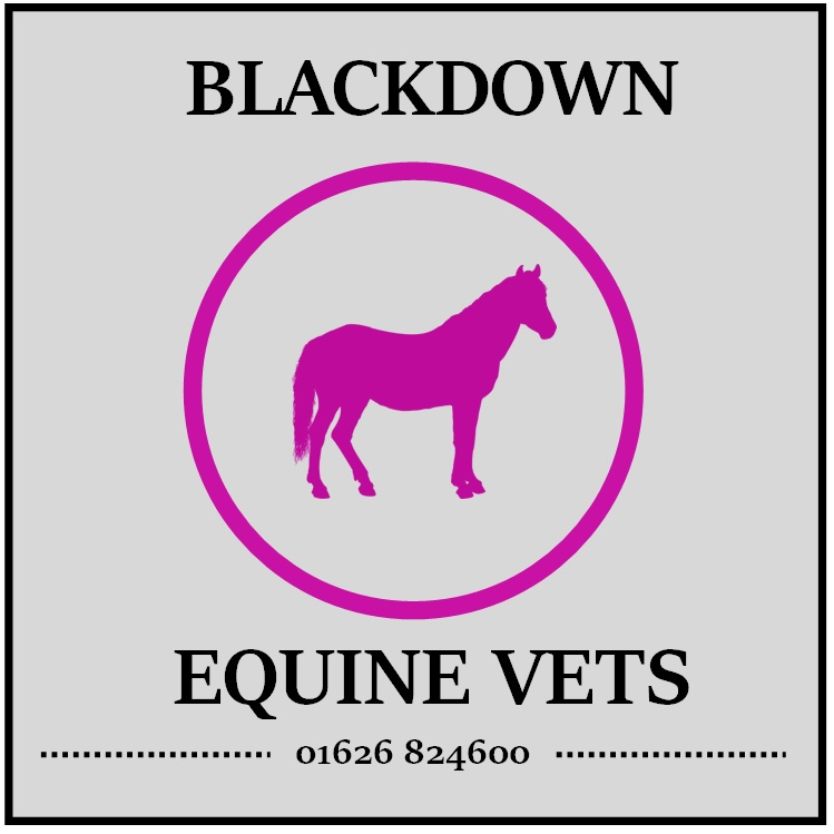 http://www.blackdownequine.co.uk logo
