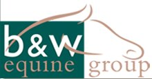 bwequinevets.co.uk logo