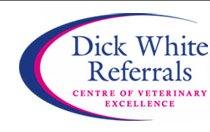 dickwhitereferrals.com logo